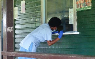 Mosquitos and HIV/AIDS in Papua New Guinea